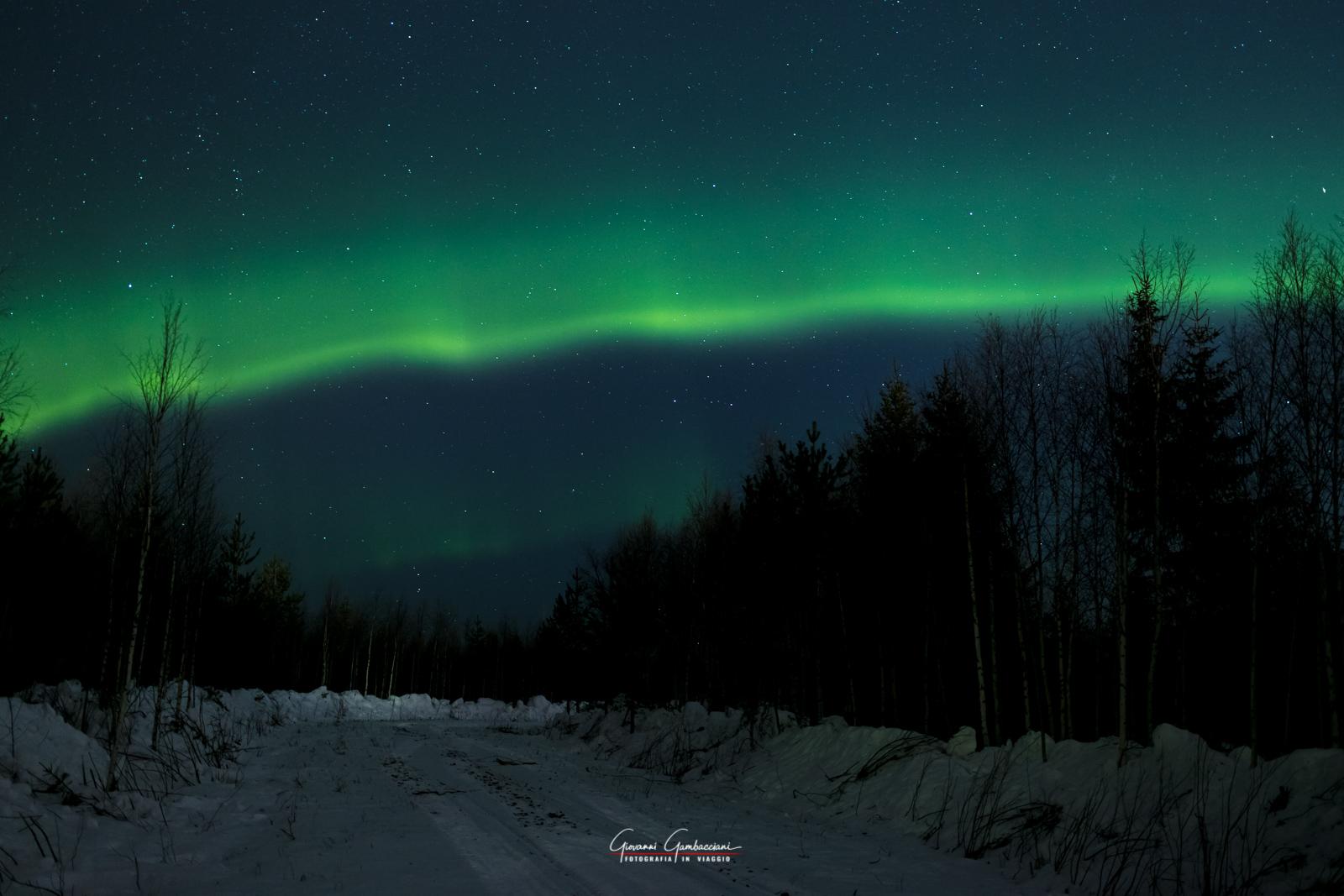 Aurora-16