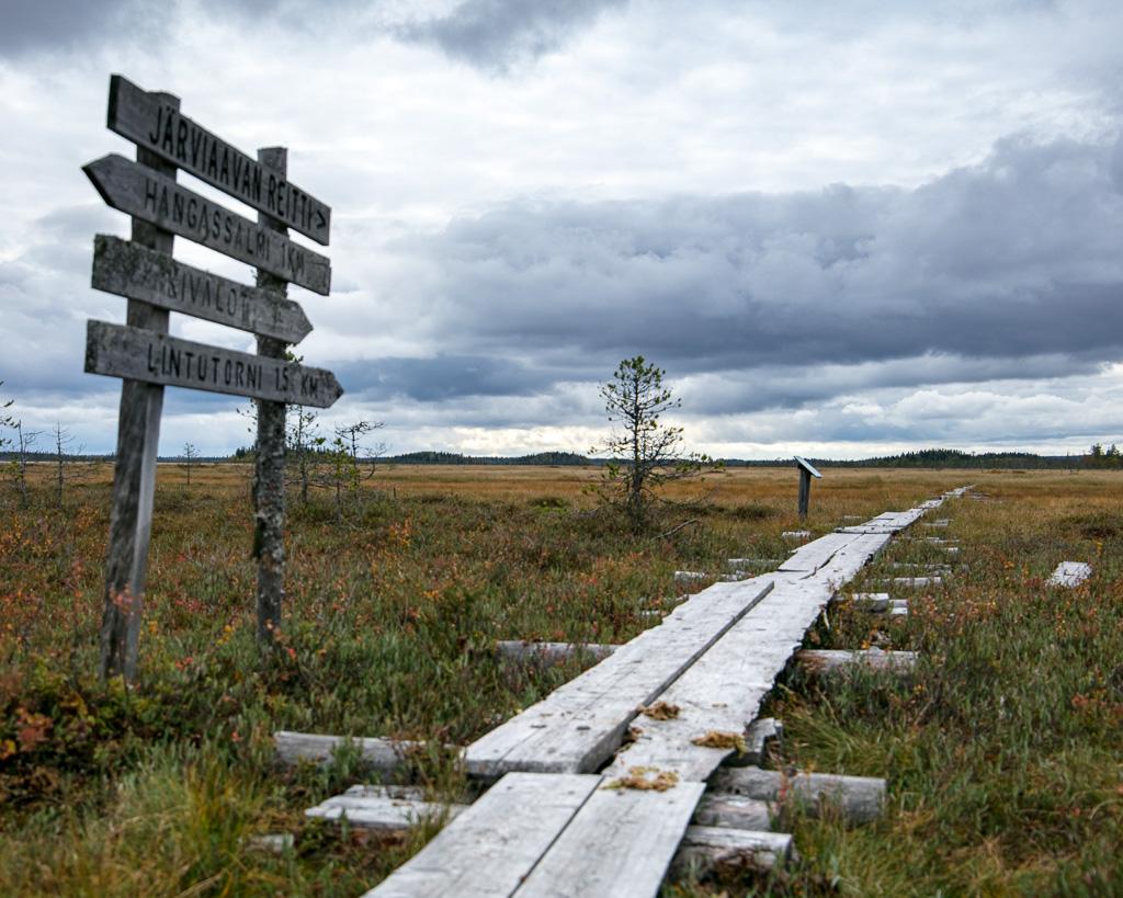 Lapponia_Finlandia_Svezia_Autunno_Foliage_-16