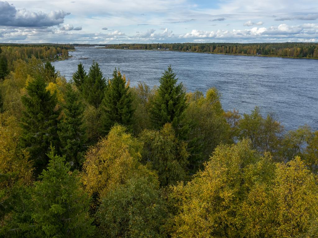 Lapponia_Finlandia_Svezia_Autunno_Foliage_-18