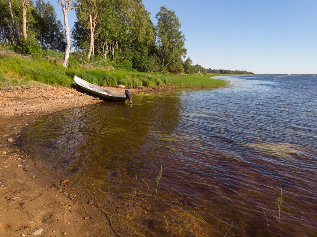 Lapponia_Finlandia_Svezia_Autunno_Foliage_-2