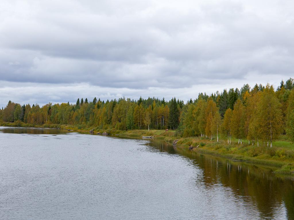 Lapponia_Finlandia_Svezia_Autunno_Foliage_-26