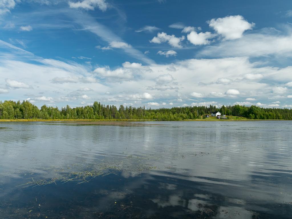 Lapponia_Finlandia_Svezia_Autunno_Foliage_-31