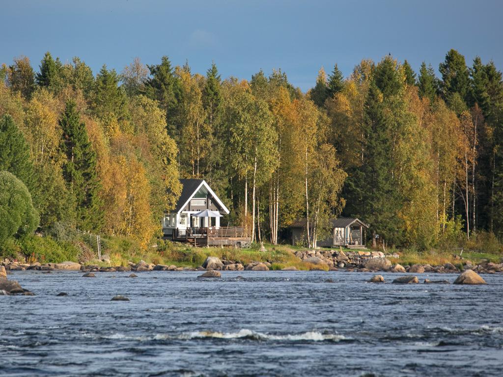 Lapponia_Finlandia_Svezia_Autunno_Foliage_-41
