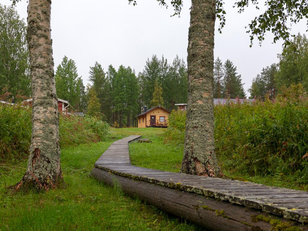 Lapponia_Finlandia_Svezia_Autunno_Foliage_-5