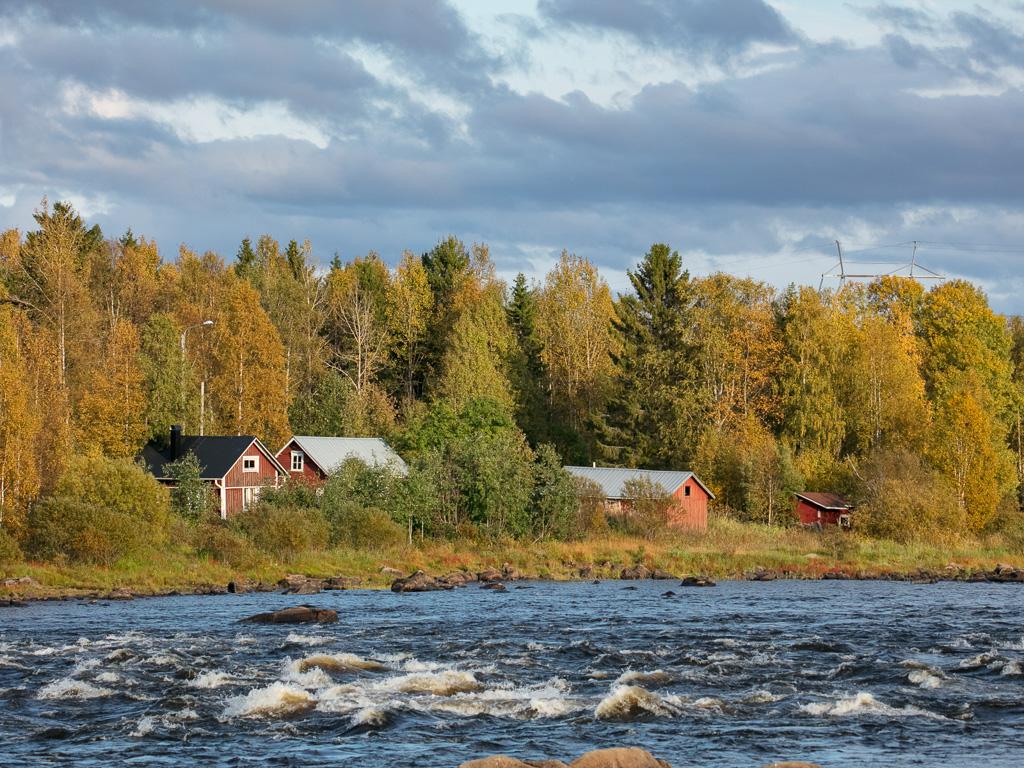 Lapponia_Finlandia_Svezia_Autunno_Foliage_-56