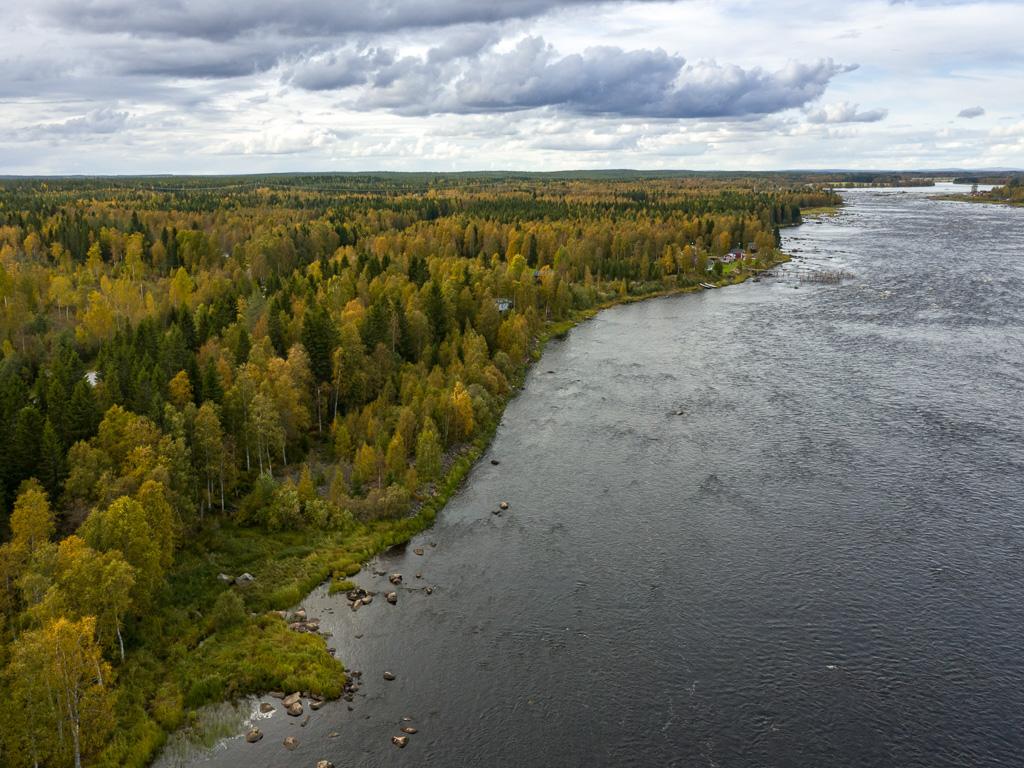 Lapponia_Finlandia_Svezia_Autunno_Foliage_-60