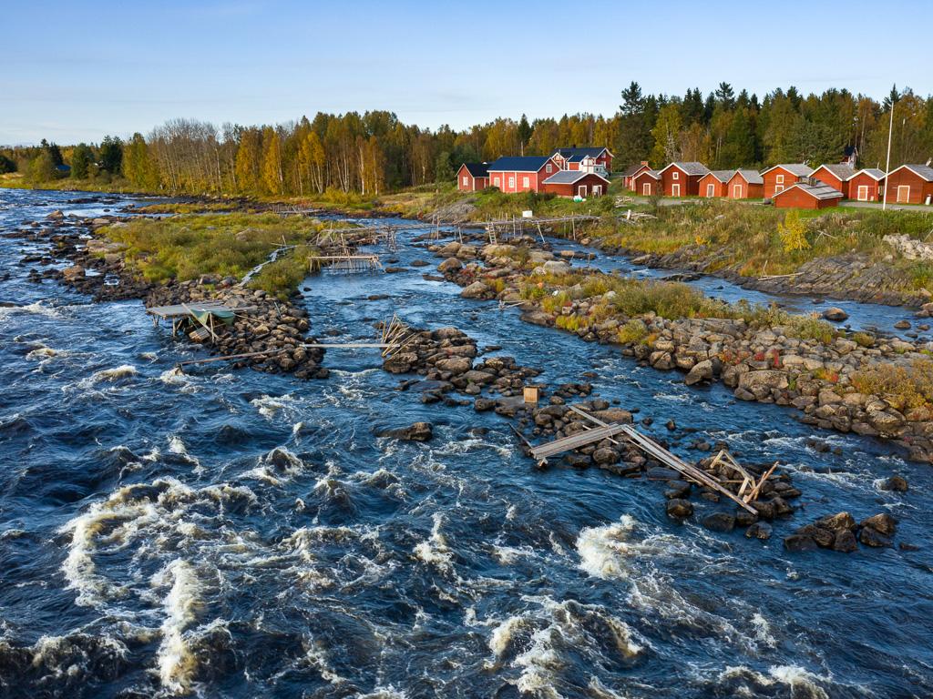 Lapponia_Finlandia_Svezia_Autunno_Foliage_-63
