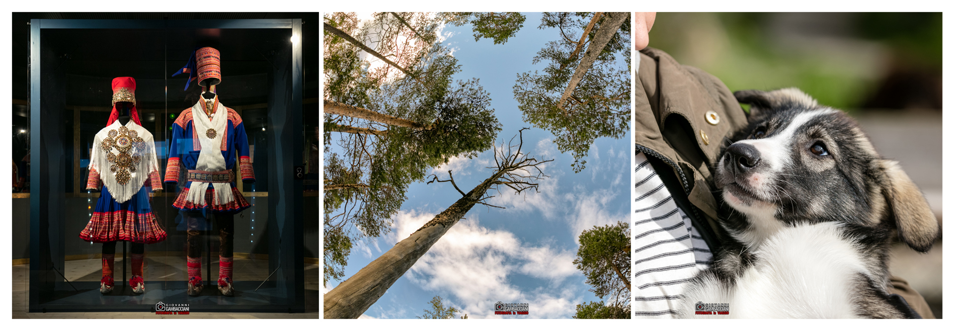 Viaggi di Gruppo  striscia_A01 [CONCLUSO] Estate in Lapponia e CapoNord: Da Martedì 25 a Lunedì 31 Luglio 2017