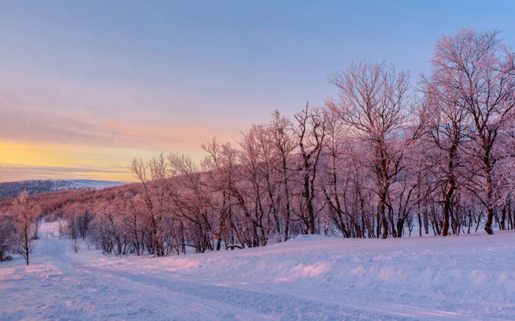 Viaggi di Gruppo  Y1A1441-HDR-Modifica-1024x640 [CONCLUSO] Finnmark, la Norvegia Sconosciuta. Viaggio fotografico. 12-19 FEB 2019