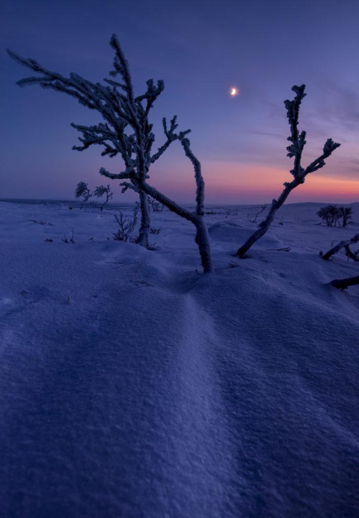 Viaggi di Gruppo  Y1A1778-HDR-Edit-709x1024 [CONCLUSO] Finnmark, la Norvegia Sconosciuta. Viaggio fotografico. 12-19 FEB 2019