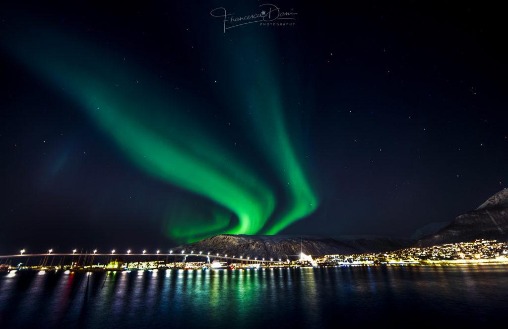 Viaggi di Gruppo  Dani_Tromso_FALLINGSPIRITS_low-1024x663 [CONCLUSO] Alla Fine del Mondo. Isole Svalbard, 6-14 Settembre 2019