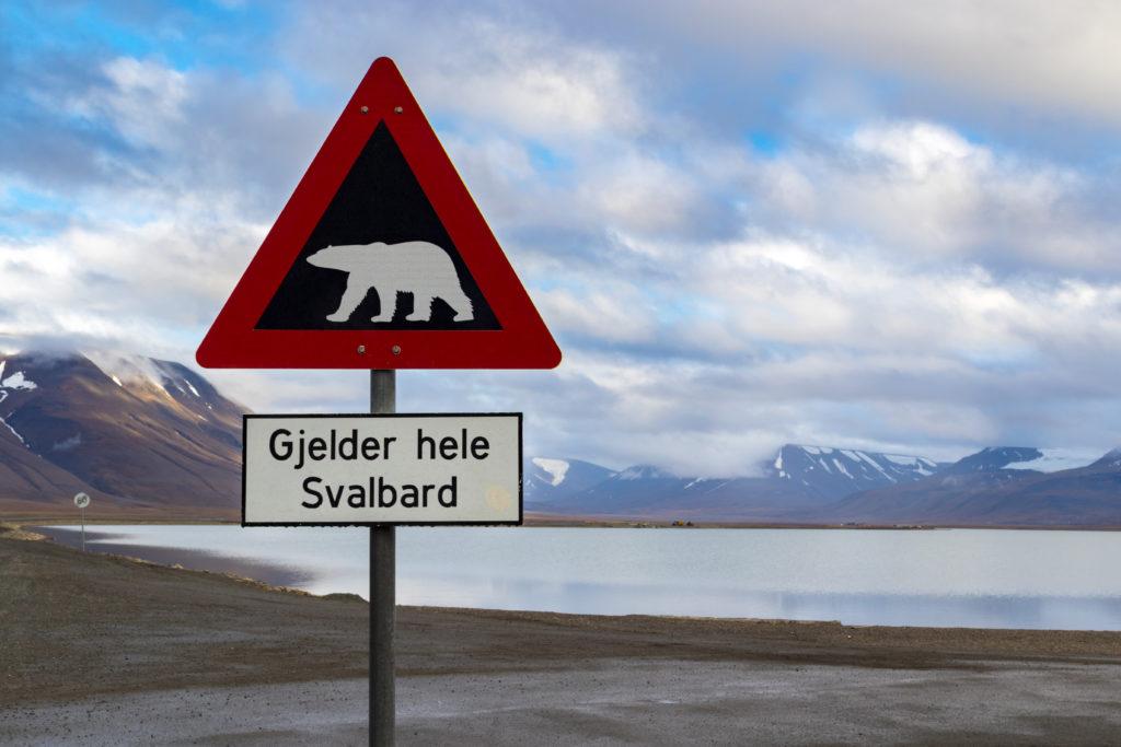 Viaggi di Gruppo  AdobeStock_175526389-1024x683 [CONCLUSO] Alla Fine del Mondo. Isole Svalbard, 6-14 Settembre 2019