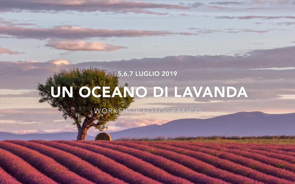 Viaggi di Gruppo  2019_07_05_Pronveza_001-1024x640 [CONCLUSO] UN OCEANO DI LAVANDA. Provenza. 5,6,7 Luglio 2019