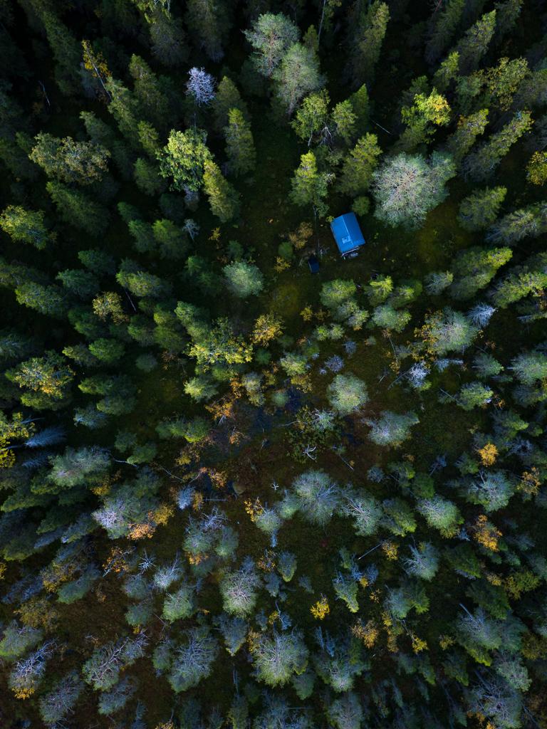 Viaggi di Gruppo  DJI_0458 [RINVIATO al 2021] Maggio 2020, Il risveglio della Natura