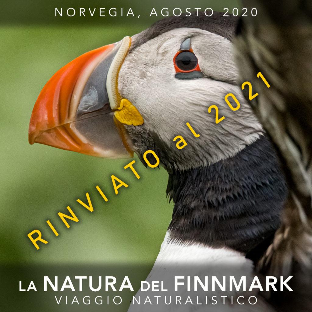 Viaggi di Gruppo  2020_08_01_Finnmark_Cover06A_rinviato-1024x1024 [RINVIATO al 2021] AGOSTO 2020, LA NATURA DEL FINNMARK