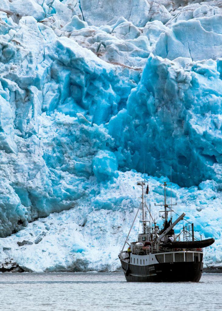 Viaggi di Gruppo  264A0310-Modifica-731x1024 [ANTEPRIMA] Giugno 2022. La Natura del Polo Nord