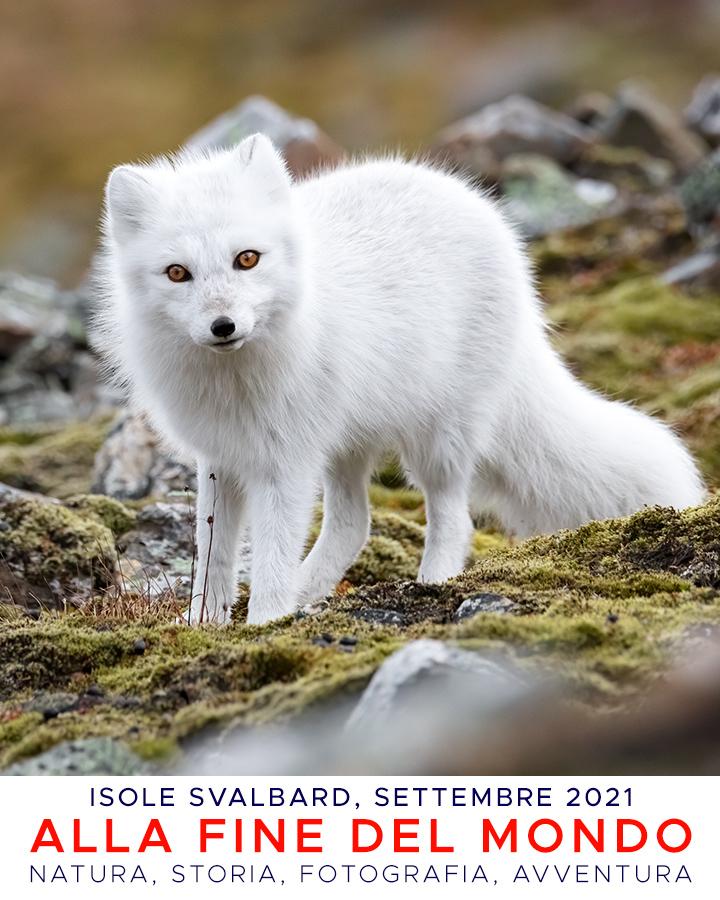 Svalbard21_copertina_V54_02a.psd.jpg